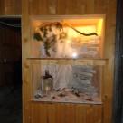 Adventsfenster Eschlikon 2014 - Dörfli Holzmannshaus